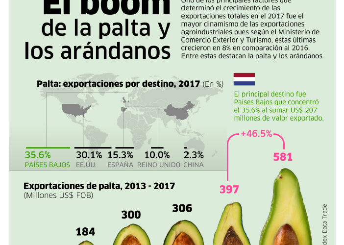 exportación_de_paltas_y_arandanos