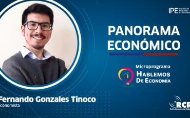 economía, Fernando gonazales, Perú